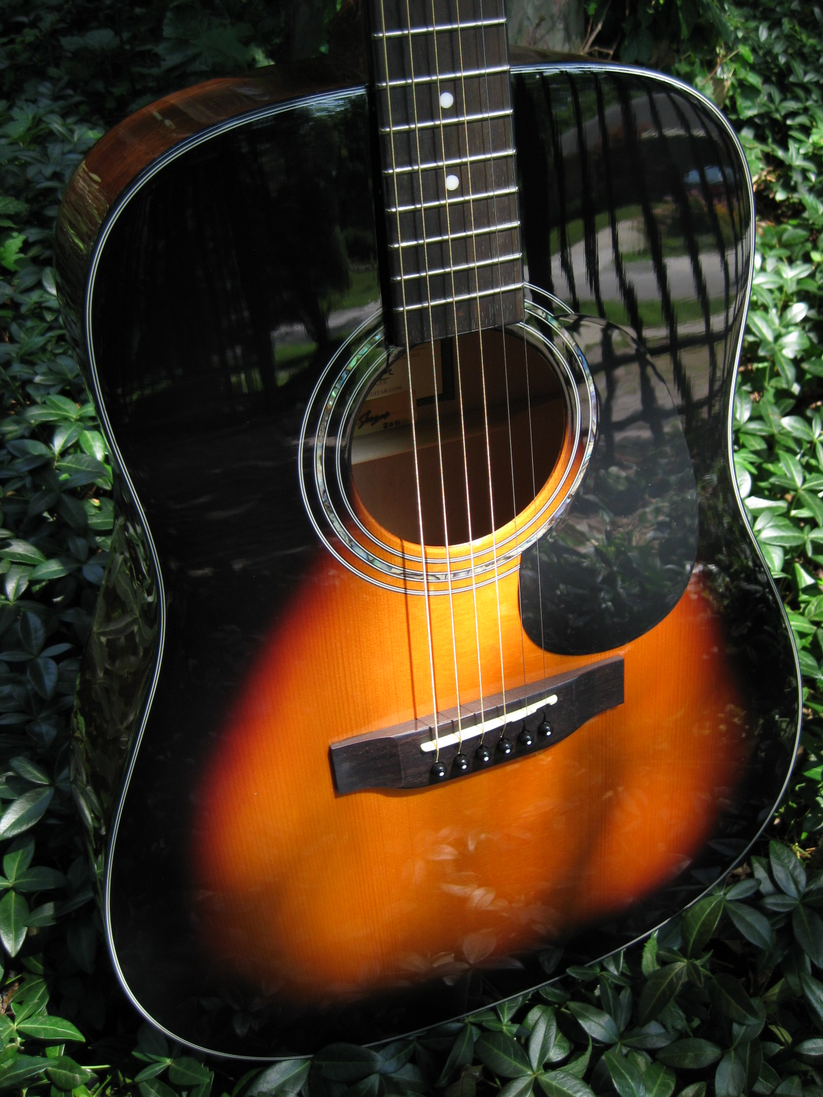zad20sunburst